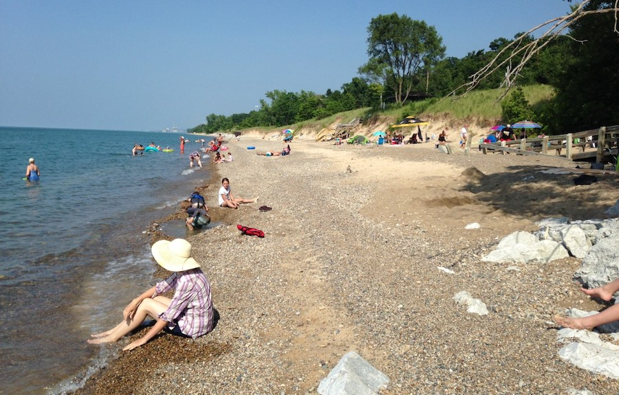An Integrated Physical-Social-Community (PSC) Approach for Sustainable Shore Protection, Beach Integrity, and Bluff/Dune Stabilization Along Lake Michigan